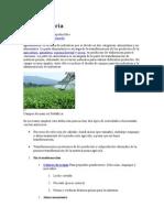 AGROINDUSTRIA2.docx