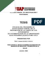 TESIS FINAL DE ELIZABETH MONRROY.doc