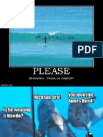Funny Dolphins