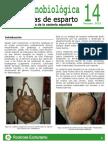 Rockrose-Hoja Etnobiologica 14 Calabazas Esparto