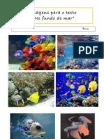 Imagens Para o Texto No Fundo Do Mar