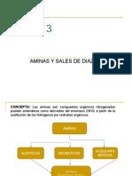Tema 3 Aminas y Sales de Diazonio