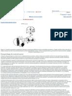 As Concepções Do Balé Como Possível Recurso Terapêutico Na Fisioterapia - Monografias