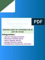 INFORME SOBRE CURTIEMBRE DE LA PIEL DE CONEJO.docx