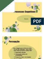 Processos Cognitivos - Resumo