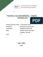 TEORIAS DE ENFERMERIA Y PARES CRANEALES