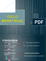 Ciclo Menstrual Final
