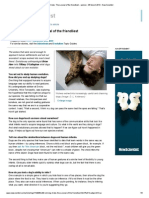 Old Dog Tricks_ the Survival of the Friendliest - Opinion - 06 March 2013 - New Scientist