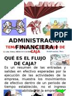 H) FLUJO DE CAJA