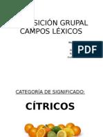 Campo léxico de los cítricos
