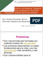 T-29 Metabolismo de Proteínas