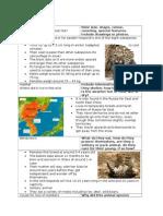 amur leopard practice group