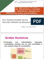 T-35 Replicación Del DNA, Caracteristicas. Mecanismo