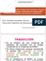T-37 Traducción Sintesis de Proteinas