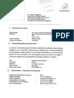 Informe Torre i Schindler