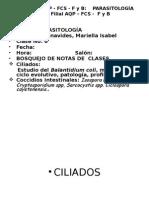 6t Clase Coccidios 2014