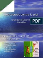 Anticuerpos Contra La Piel