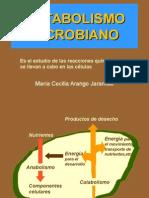 metabolismo Bacterian