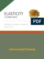 Elasticity - Report