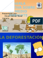 Charla Educativa Deforestación