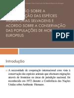 convenção sobre conservação das espécies migratórias selvagens