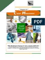 52828063 Financing Methodolgy Credit Managemant Project