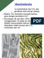 Fotosintesis (1)