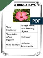 Maklumat Bunga Raya