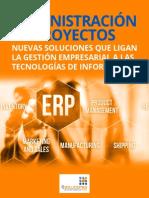 Nuevas Soluciones Que Ligan La Gestion Empresarial a Los Sistemas ERP