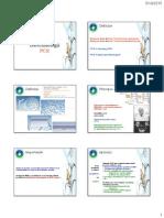 PCR Si Elecroforeza