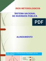 METODOLOGIA DEL SNIP.pptx