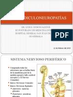 polirradiculoneuropatía
