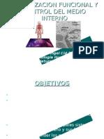 Introducción a la Fisiología Humana