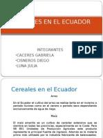 Cereales en El Ecuador