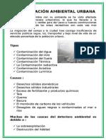 Contaminacion Ambiental Dos Hojas