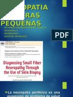 Neuropatia de Fibra Pequeña