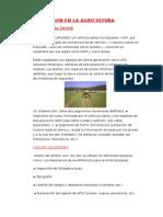 Dron en La Agricultura