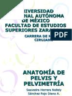 Anatomia de Pelvis y Pelvimetria