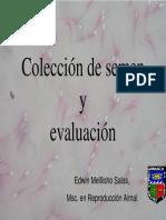 E. Mellisho -Coleccion de semen y evaluacion.pdf