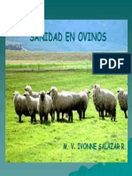 I Salazar- Sanidad en ovinos.pdf