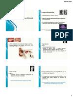 Ortopedia Maxilar 2014
