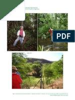 Fotos de Situações Vividas por PFAs em campo