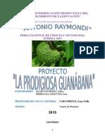 Proyecto de La Guanabana