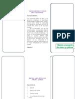 Fencyt 1er Grado 2015 Extracto de Maca y Quinua