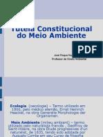 Aula 1 - Direito Ambiental Constitucional