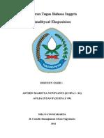 analiticyal eksposision