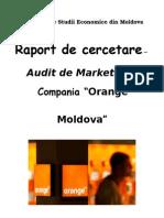 Auditul de Marketing