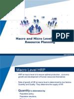 Macro and Micro level HRP