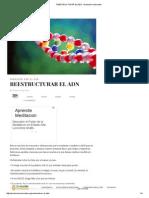Reestructurar El Adn - Evolución Consciente