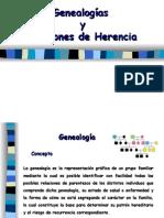 Genealogiagenealogias-y-patrones-de-herencias y Patrones de Herencia